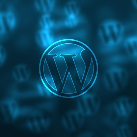 wordpress-top-5-plugins